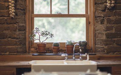 5 plantes pour purifier votre chambre