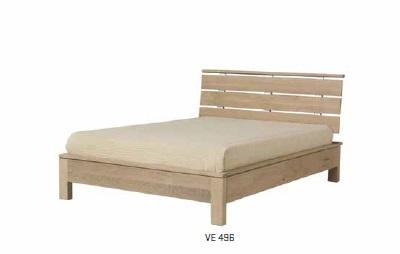 VE496